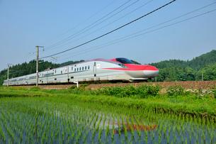 秋田新幹線こまちの写真素材 [FYI01701637]