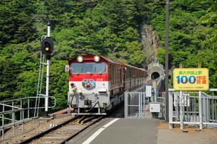 大井川鉄道井川線大井川湖上駅の写真素材 [FYI01701783]