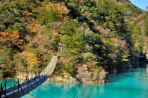 寸又峡夢の吊り橋の写真素材 [FYI01702492]