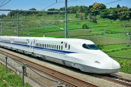 東海道新幹線 N700系の写真素材 [FYI01702634]