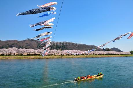 北上川と北上展勝地の写真素材 [FYI01702701]
