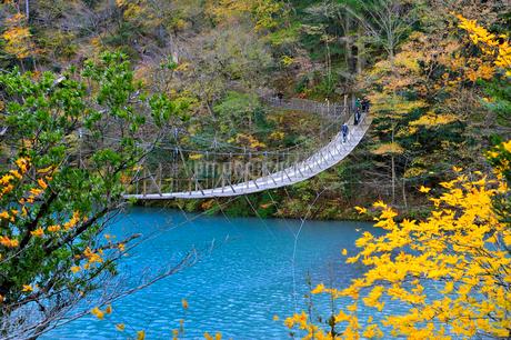 寸又峡夢の吊り橋の写真素材 [FYI01702715]