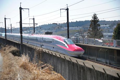 秋田新幹線スーパーこまちと東北新幹線はやての写真素材 [FYI01703021]