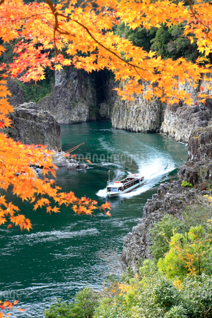 紅葉の瀞峡の写真素材 [FYI01703308]