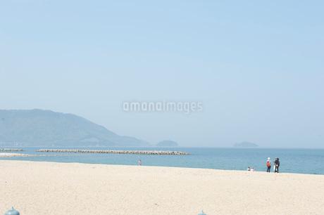 津田の松原の写真素材 [FYI01703381]