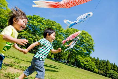 公園で鯉のぼりの下を走る男の子たちの写真素材 [FYI01703401]