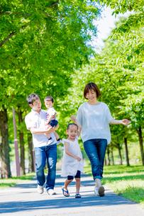 公園を歩く4人家族の写真素材 [FYI01703433]