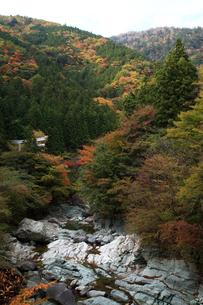 面合渓谷(紅葉)の写真素材 [FYI01703465]