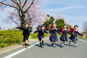 桜の咲く道を走る新一年生の写真素材 [FYI01703517]