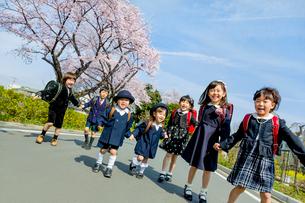 桜の咲く道を歩く新一年生と新入園児の写真素材 [FYI01703544]