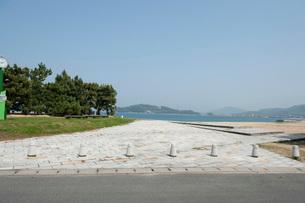 津田の松原の写真素材 [FYI01703578]