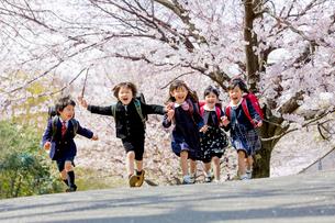 桜の咲く公園を走る新一年生の写真素材 [FYI01703653]
