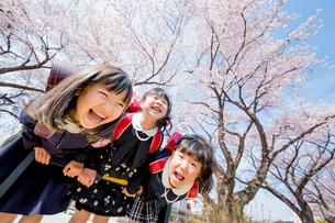 桜の咲く遊歩道で遊ぶ新一年生の写真素材 [FYI01703725]