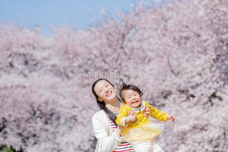 桜の咲く公園で遊ぶ母親と娘の写真素材 [FYI01703727]