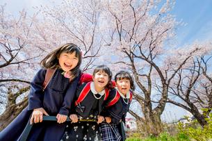 桜の咲く遊歩道で遊ぶ新一年生の写真素材 [FYI01703754]