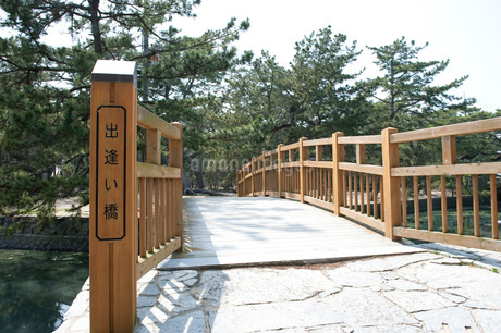 津田の松原の写真素材 [FYI01703775]