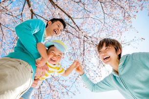 桜の咲く公園で遊ぶ3人家族の写真素材 [FYI01703846]