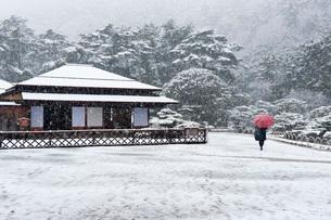 栗林公園(雪景色)の写真素材 [FYI01703862]