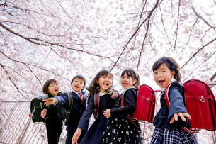 桜の咲く遊歩道で遊ぶ新一年生の写真素材 [FYI01703905]