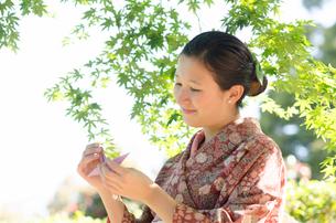 新緑のもみじをバックに折り鶴を見つめる着物姿の女性の写真素材 [FYI01703946]
