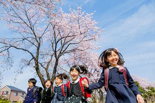 桜の咲く道を走る新一年生の写真素材 [FYI01703971]
