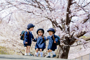 桜の咲く公園で遊ぶ新入園児の写真素材 [FYI01704061]