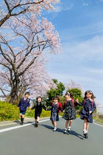 桜の咲く道を走る新一年生の写真素材 [FYI01704167]