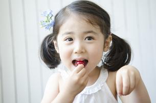 さくらんぼを食べる女の子の写真素材 [FYI01704196]