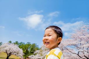 桜の咲く公園で笑う男の子の写真素材 [FYI01704330]
