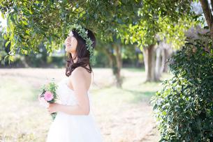 森の中に立っているウェディングドレス姿の女性の写真素材 [FYI01704911]