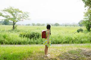 ランドセルを背負って遠くを見ている女の子の写真素材 [FYI01705173]