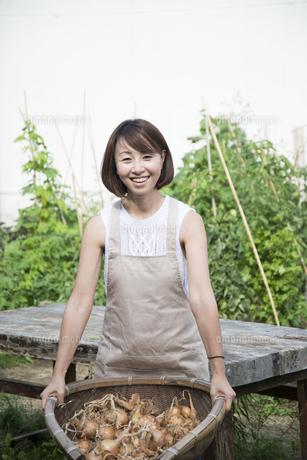 収穫した玉ねぎを持っている女性の写真素材 [FYI01705261]
