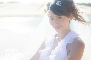 ベールをかけているドレス姿の女性の写真素材 [FYI01705276]