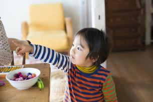 家でくつろいでいる男の子の写真素材 [FYI01705481]