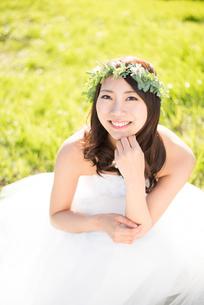 草の上に座るウェディングドレス姿の女性の写真素材 [FYI01705554]