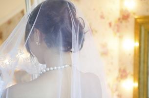 ベールを掛けているドレス姿の女性の後ろ姿の写真素材 [FYI01705714]
