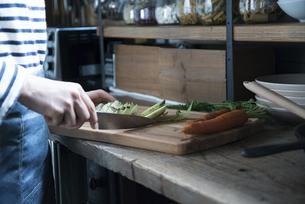 キッチンで野菜を切っている女性の写真素材 [FYI01705821]