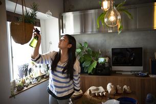 植物にスプレーをしている女性の写真素材 [FYI01705846]
