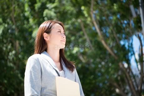 ファイルを持っている働く女性の写真素材 [FYI01705890]