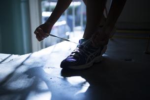 スニーカーの靴紐を結んでいる女性の手元の写真素材 [FYI01705894]