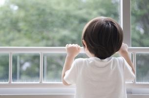 窓の外を見ている男の子の写真素材 [FYI01705909]