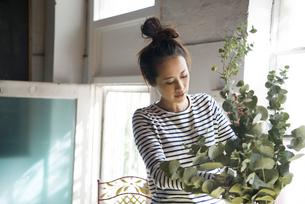 ユーカリを花瓶に生けている女性の写真素材 [FYI01705994]