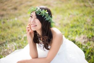 草の上に座るウェディングドレス姿の女性の写真素材 [FYI01705997]