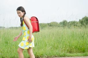 ランドセルを背負って草むらにいる女の子の写真素材 [FYI01706108]