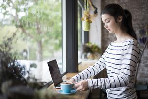 カフェでパソコンを開いてる女性の写真素材 [FYI01706140]