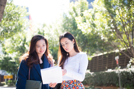外で打ち合わせをしている女性たちの写真素材 [FYI01706163]