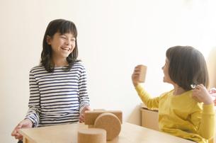 ブロックで遊ぶ姉妹の写真素材 [FYI01706415]