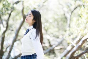 森の中で深呼吸している制服姿の女子高生の写真素材 [FYI01706439]