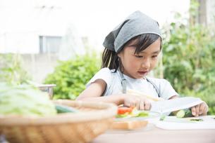 野菜を切っている女の子の写真素材 [FYI01706653]
