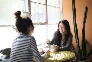 お茶を飲んでいる女性2人の写真素材 [FYI01706771]